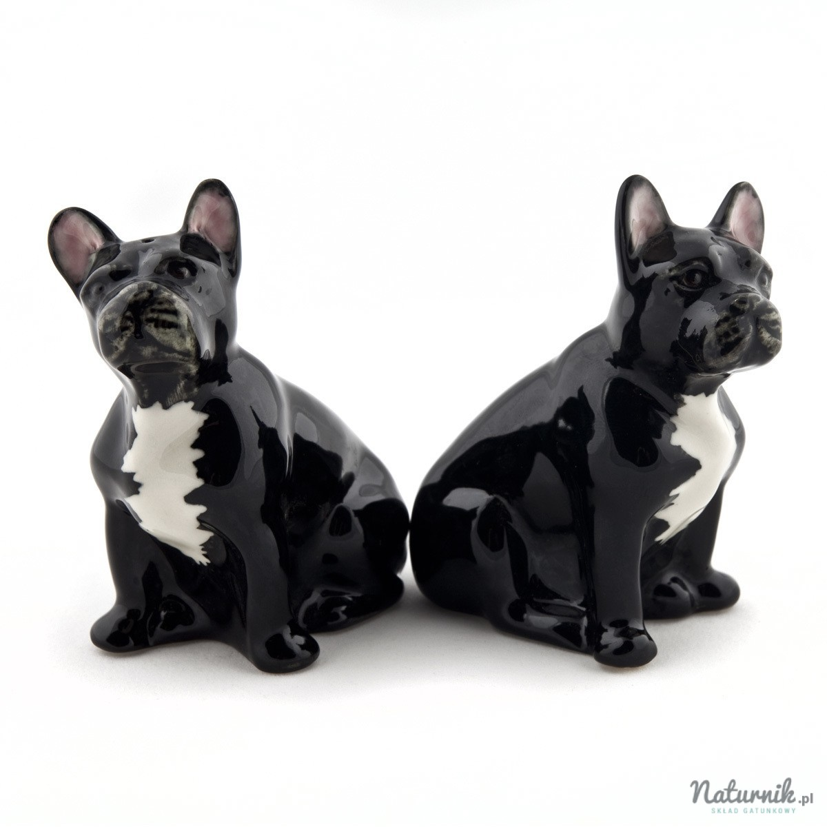 french_bulldog_black_sp_03__84670-1458750545-1280-1280