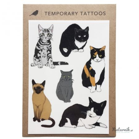 Tatuaż Zmywalny Koty